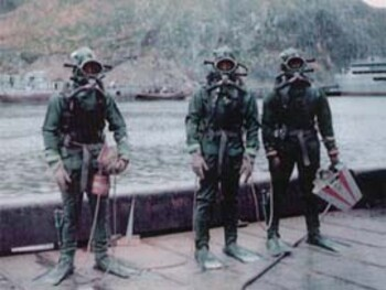 Боевые пловцы. Элементы подводной акробатики при ведении боя под  водой