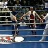 Боксёры и бокс