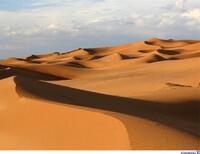 Школа выживания. Через пустыню