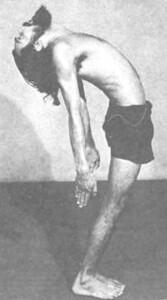 Дхирендра Брахмачари. Йога-Сукшма-Вьяяма
