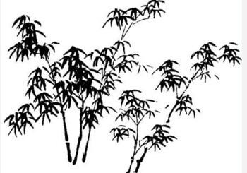 Чжао Цзиньсян. Китайский цигун — стиль