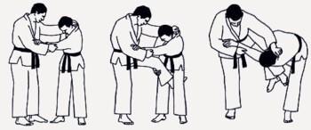 Дзюдо. Базовая технико-тактическая подготовка для начинающих.  Часть 2