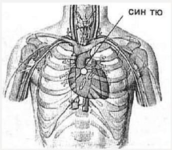 Библиотека портала. Валерий Момот. Анатомия жизни и смерти. Жизненно важные точки на теле человека. Часть 2